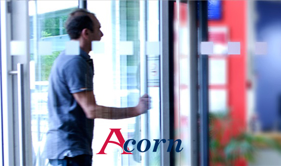 Vika-design-digital-SEO-acorn-recruitment-1